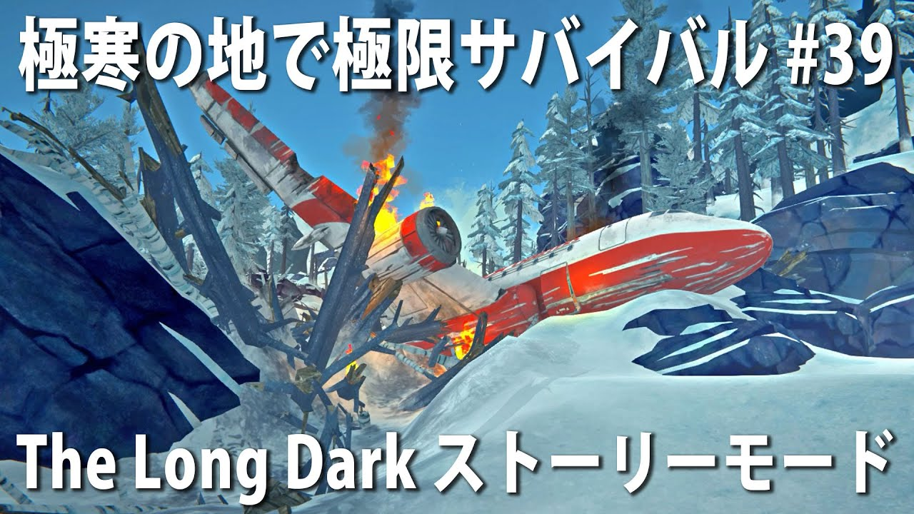 【The Long Dark #39】大雪と凍てつく寒さのなかで極限サバイバル!旅客機の墜落現場に到着【アフロマスク】
