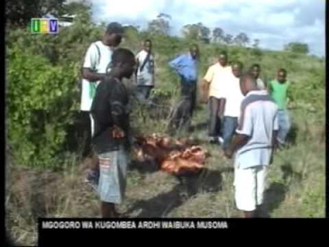 Habari za Tanzania via ITV na Mtazamo Mpya