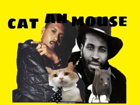CAT VS MOUSE:     EEKA MOUSE VS SUPERCAT CLASH