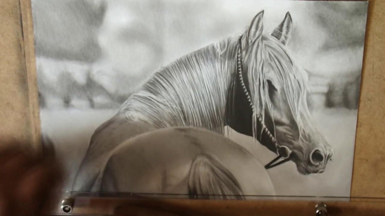 Speed Drawing Desenho De Cavalo Realista Youtube