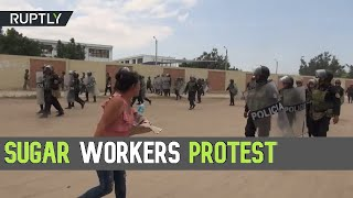Bitter Sugar: Police & protesters exchange teargas & stones at sugar-workers demo, Peru