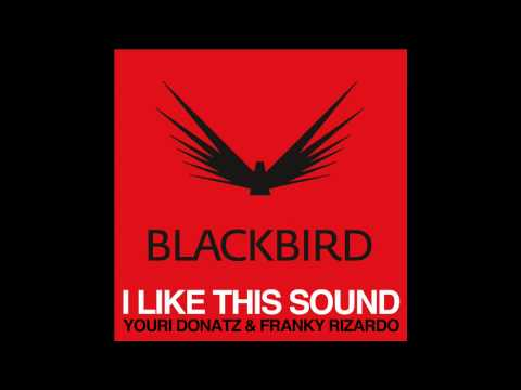 Youri Donatz & Franky Rizardo - I Like This Sound (Original Mix)