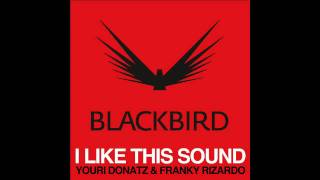 Youri Donatz & Franky Rizardo - I Like This Sound (Original Mix)