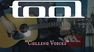 Culling Voices (Acoustic Tool cover)