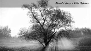 Ahmad Pejman - Beed-e Majnoon / The Willow Tree / Söğüt Ağacı Soundtrack
