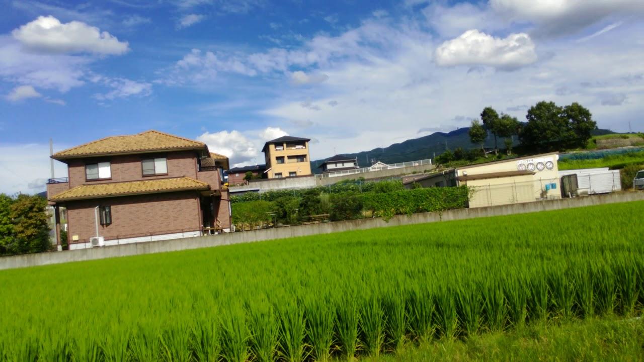 大阪府河南町のとある風景 - YouTube