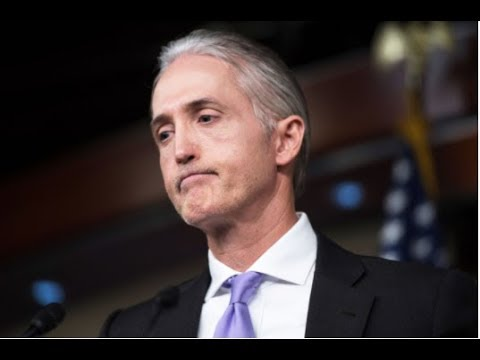 TREY GOWDY KNOWS WHO THE LEAKER IS!
