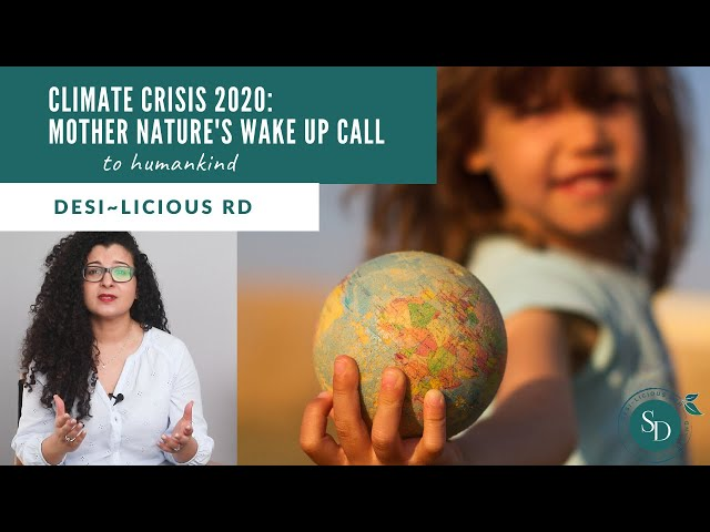 Climate Crisis 2020: Is COVID-19 Mother Nature's Way Of Slowing Us Down?
