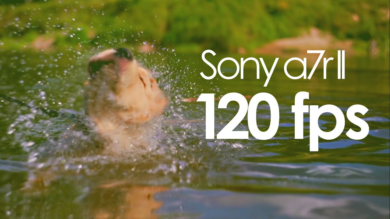 Best Settings for 120 FPS - Sony A7rii - Sony Alpha Full