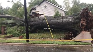100-year-old oak tree falls, smashing Fort Mill business