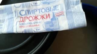 Как бродят Воронежские спиртовые  дрожжи(Воронежские