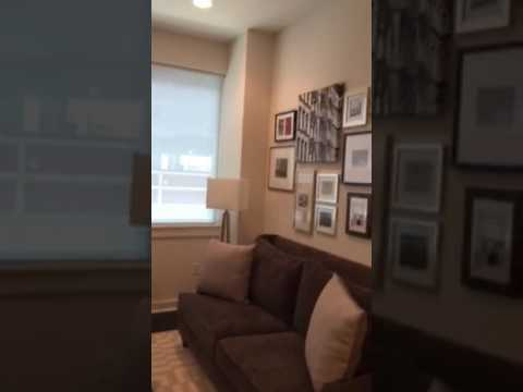 The Star Apartments Houston One Bedroom