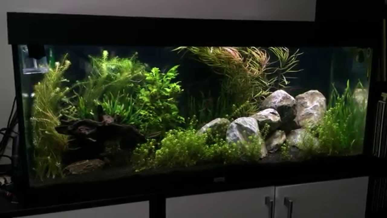 HVP Aqua Aquarium led verlichting - YouTube