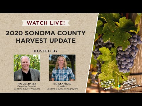 wine article Sonoma County 2020 Harvest Kickoff Webinar