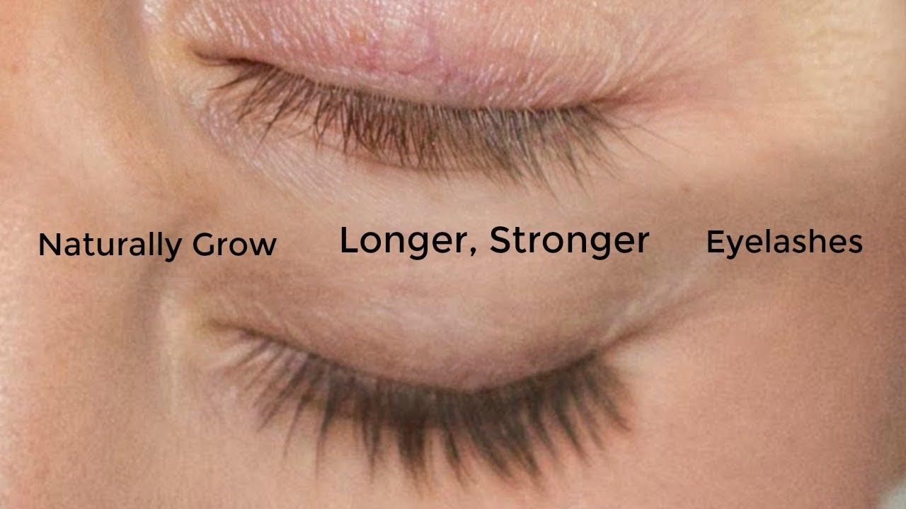 ab2dc9e7583 Xlash Eyelash Serum Review - Naturally Grow Longer, Stronger ...