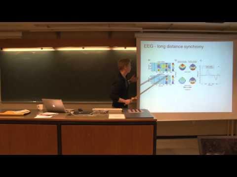 Neurobiology 13. Lec. - EEG - Long distance Synchrony [6/8]