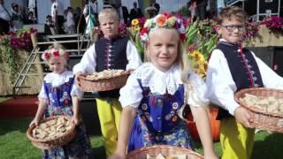 Dożynki Wojewódzkie w Ujeździe | Gmina Ujazd - Opolskie