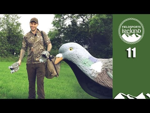 Irresistible Pigeon Patterns - Fieldsports Ireland Episode 11