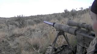 Eastern Oregon Coyote Hunting