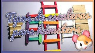 DIY Escaleras para Hámster   Juguetes y Construcciones   MOA's World