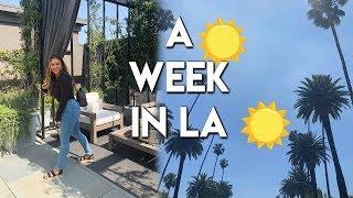VLOG   My Life In LA