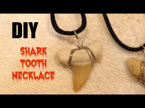 Diy Shark Tooth Necklace Youtube