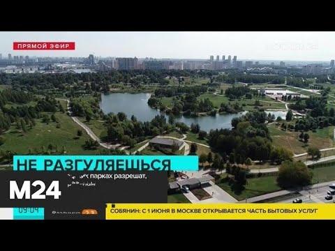 Когда москвичи смогут выходить на прогулки - Москва 24