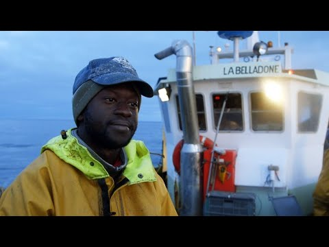 Video: Fishing Far From Home, From Senegal To France's Brittany