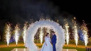 Яркое завершение свадьбы