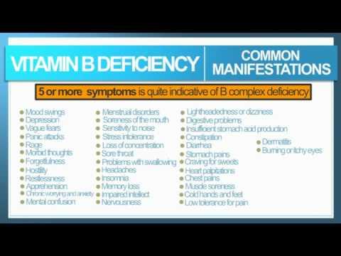 Intro To B Vitamins