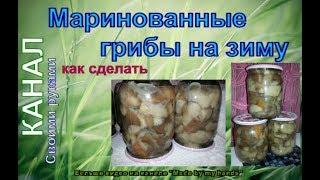 Маринованные маслята на зиму / Marinated mushrooms