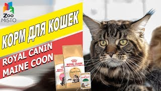 Корм для кошек Мейн-Кун Роял Канин | Обзор корма для котов | Royal Canin Maine Coon review