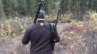 Охота на лося – красивые, уникальные кадры..Аляска.
