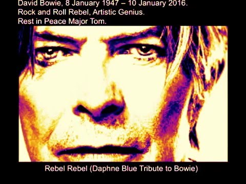 RIP David Bowie (Rebel Rebel Cover by Daphne Blue as tribute on news of passing)