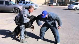 Calgary Canine Cop Calendar