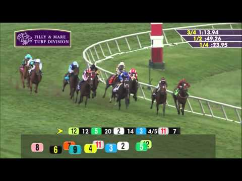 2015 Breeders' Cup Filly & Mare Turf (G1) - Stephanie's Kitten