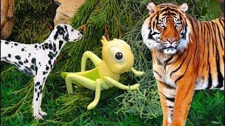 ДОБРЫЕ МУЛЬТИКИ про животных и машинки! СБОРНИК ИЗ ТРЕХ СЕРИЙ! Видео про животных