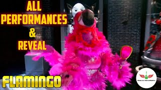 Masked Singer Flamingo All Performances & Reveal | Season 2
