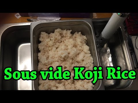 culturing-koji-rice-sous-vide-|-fermentation-tutorial-(for-making-miso,-shio-koji,-and-much-more)