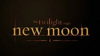 Alexandre Desplat - New Moon (the meadow) [New Moon Soundtrack]