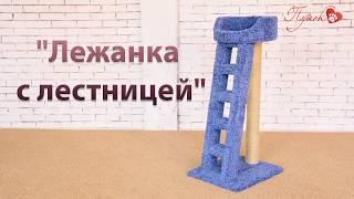 "Процесс сборки комплекса ""Лежанка с лестницей"""