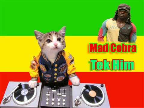 Mad Cobra- tek him Mp3