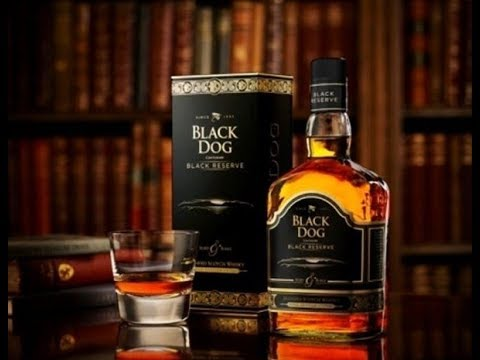 Black Dog Whisky Review  | Daily Daaru Vlogs