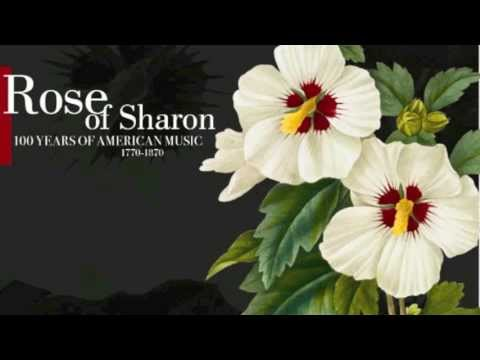 """Rose of Sharon"": 1770-1870 - 100 Years Of American Music"