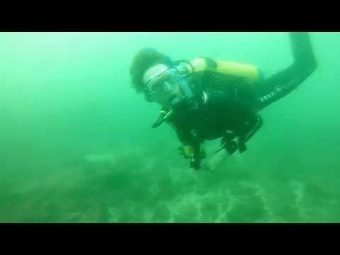 Australia - Byron Bay Julian Rocks dive 1 - Sept 2017