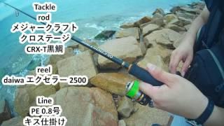 釣りガチャ 番外編 初心者の方とキス釣りに出かけてみた 前編 thumbnail