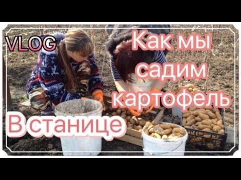 Щучинск — Википедия
