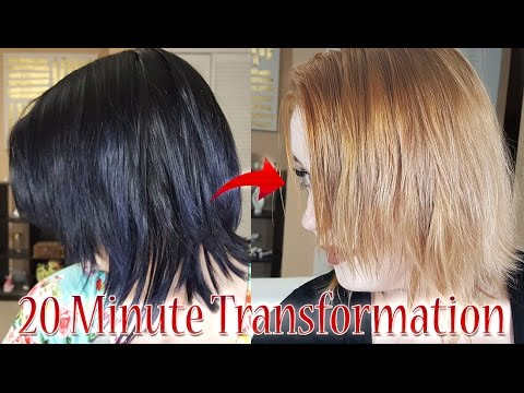 Black To Blonde Hair In 20 Minutes Color Oops Demo Review Youtube