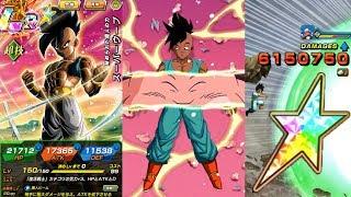 100% POTENTIAL SYSTEM TEQ LR MAJUUB SHOWCASE! Dragon Ball Z Dokkan Battle