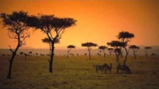 www.viaggidelleden.it  volo+hotel sul nostro sito...crea il tuo viaggio low cost